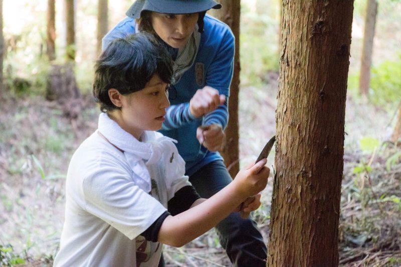 きらめ樹常陸:選抜皮剥き